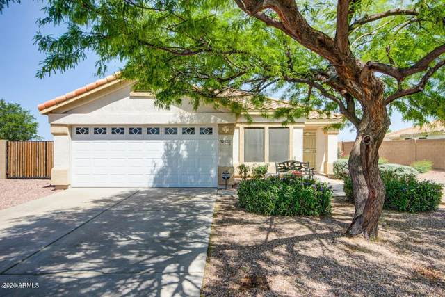 16541 N Lasso Drive, Surprise, AZ 85374 (MLS #6039184) :: Conway Real Estate