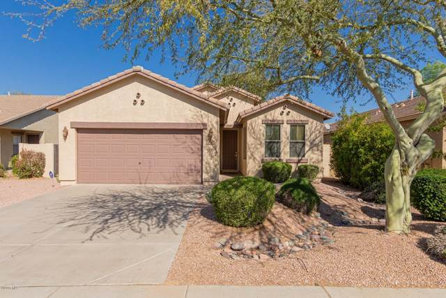 3440 E Powell Way, Gilbert, AZ 85298 (MLS #6039196) :: NextView Home Professionals, Brokered by eXp Realty