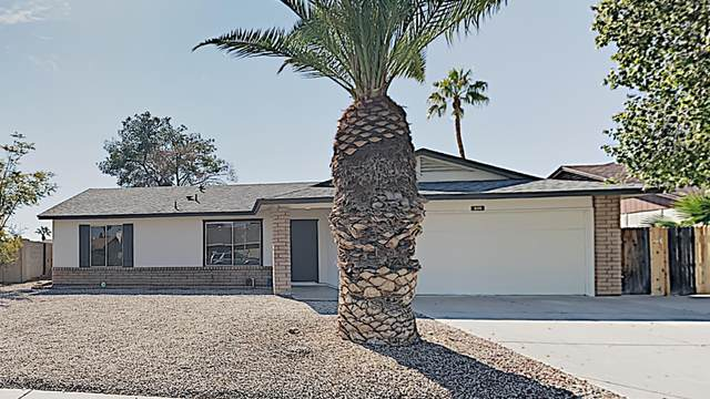 805 W Nopal Place, Chandler, AZ 85225 (MLS #6039246) :: NextView Home Professionals, Brokered by eXp Realty