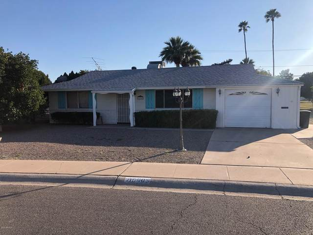 10903 W Oakmont Drive, Sun City, AZ 85351 (MLS #6039281) :: NextView Home Professionals, Brokered by eXp Realty