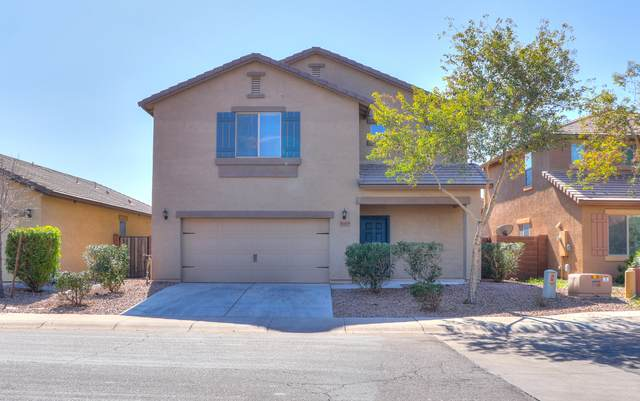41415 W Lucera Lane, Maricopa, AZ 85138 (MLS #6039284) :: Conway Real Estate