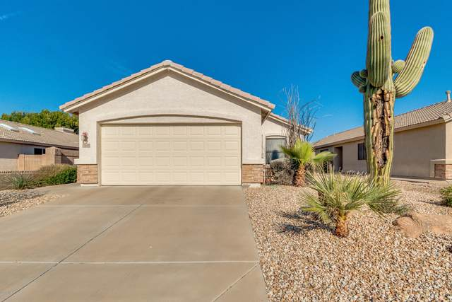 19849 N 35TH Street, Phoenix, AZ 85050 (MLS #6039309) :: The Mahoney Group