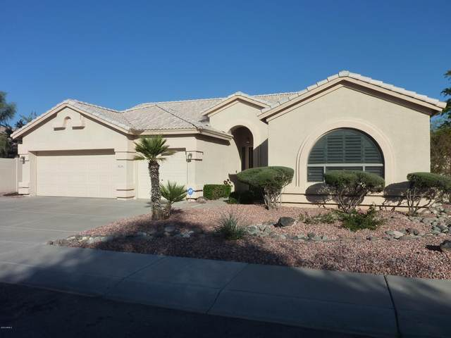 2911 N 113TH Avenue, Avondale, AZ 85392 (MLS #6039325) :: Long Realty West Valley