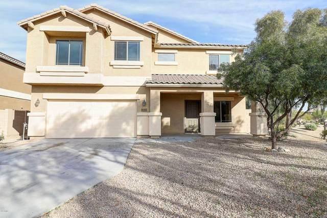 11561 N 163RD Drive, Surprise, AZ 85388 (MLS #6039342) :: Santizo Realty Group