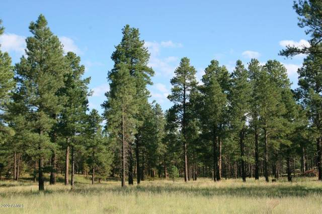 TBD Forest Road 122, Happy Jack, AZ 86024 (MLS #6039361) :: Lucido Agency