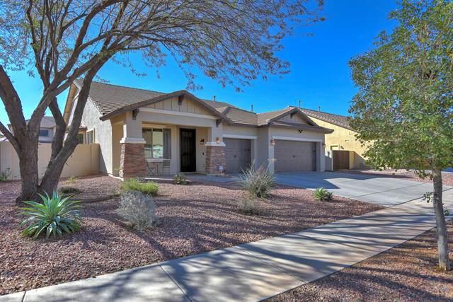 14065 W Dahlia Drive, Surprise, AZ 85379 (MLS #6039379) :: Conway Real Estate
