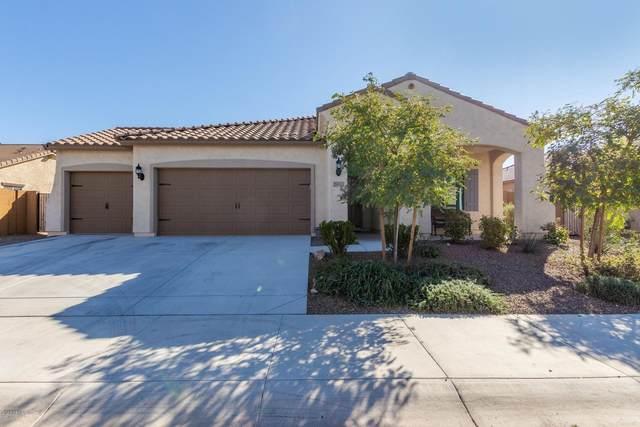 25973 W Escuda Drive, Buckeye, AZ 85396 (MLS #6039404) :: Howe Realty