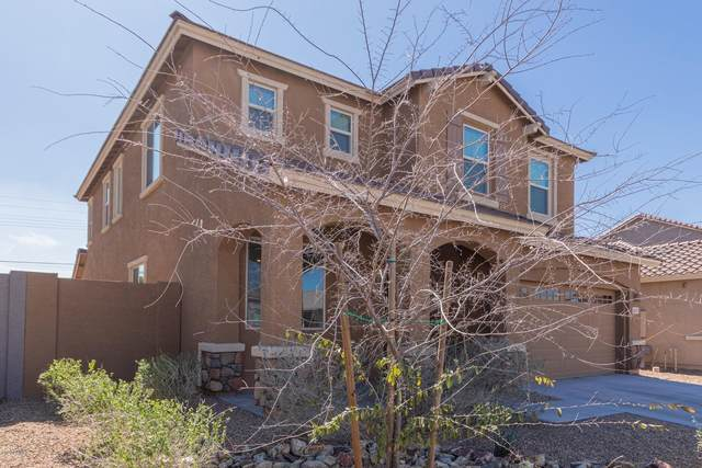 1619 E Chanute Pass, Phoenix, AZ 85040 (MLS #6039407) :: Openshaw Real Estate Group in partnership with The Jesse Herfel Real Estate Group