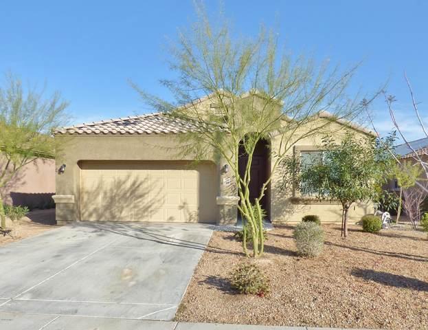 23818 W Ripple Road, Buckeye, AZ 85326 (MLS #6039455) :: Kepple Real Estate Group