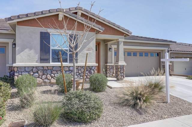 5065 N 145TH Drive, Litchfield Park, AZ 85340 (MLS #6039472) :: Devor Real Estate Associates