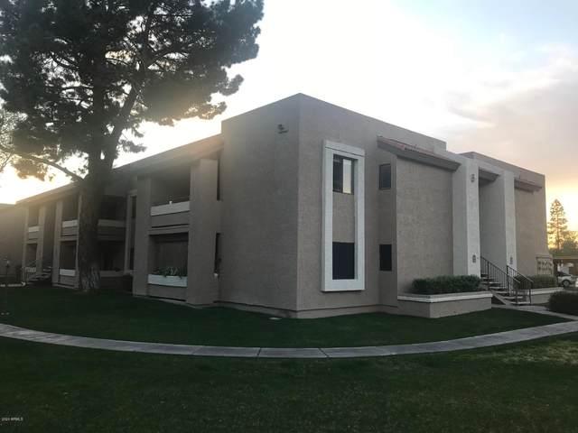 2146 W Isabella Avenue #221, Mesa, AZ 85202 (MLS #6039482) :: The Bill and Cindy Flowers Team