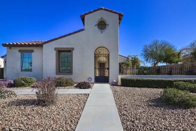 1981 N 161ST Drive, Goodyear, AZ 85395 (MLS #6039488) :: Brett Tanner Home Selling Team