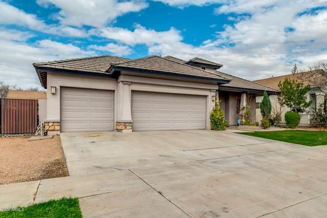 3442 E Cotton Lane, Gilbert, AZ 85234 (MLS #6039505) :: Conway Real Estate
