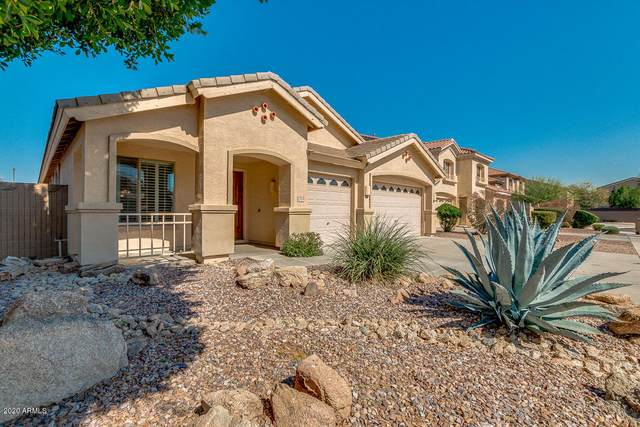 12510 W Segovia Drive, Litchfield Park, AZ 85340 (MLS #6039510) :: The Kenny Klaus Team