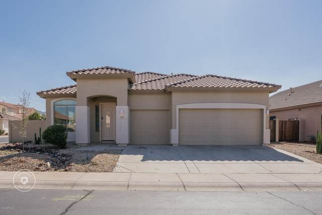4311 W Piedmont Road, Laveen, AZ 85339 (MLS #6039558) :: Cindy & Co at My Home Group