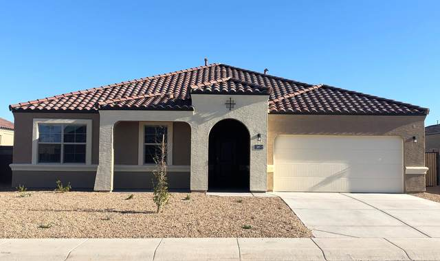 30480 W Fairmount Avenue, Buckeye, AZ 85396 (MLS #6039575) :: The Daniel Montez Real Estate Group