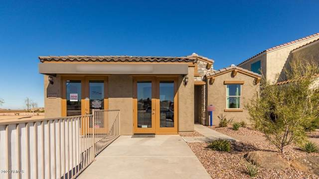 4614 W Vervain Avenue, San Tan Valley, AZ 85142 (MLS #6039621) :: Conway Real Estate