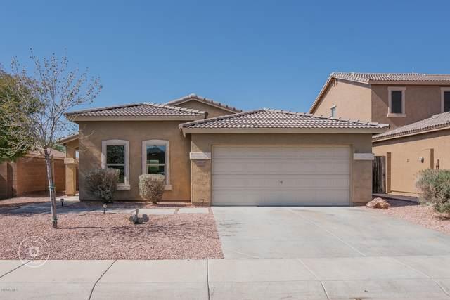 6952 S Sunrise Way, Buckeye, AZ 85326 (MLS #6039631) :: Cindy & Co at My Home Group