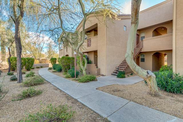 29606 N Tatum Boulevard #246, Cave Creek, AZ 85331 (MLS #6039640) :: RE/MAX Desert Showcase