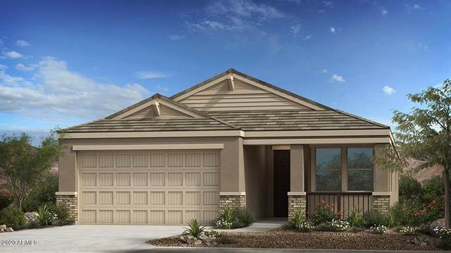 519 E Creosote Drive, Phoenix, AZ 85085 (MLS #6039671) :: Yost Realty Group at RE/MAX Casa Grande