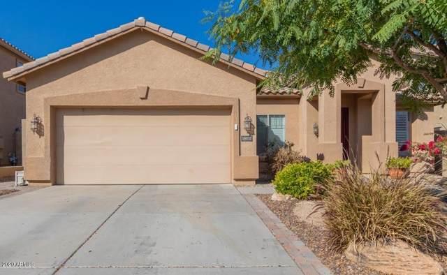 18032 W Turquoise Avenue, Waddell, AZ 85355 (MLS #6039674) :: Sheli Stoddart Team | M.A.Z. Realty Professionals