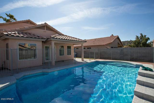 1710 E Pontiac Drive, Phoenix, AZ 85024 (MLS #6039675) :: Lucido Agency