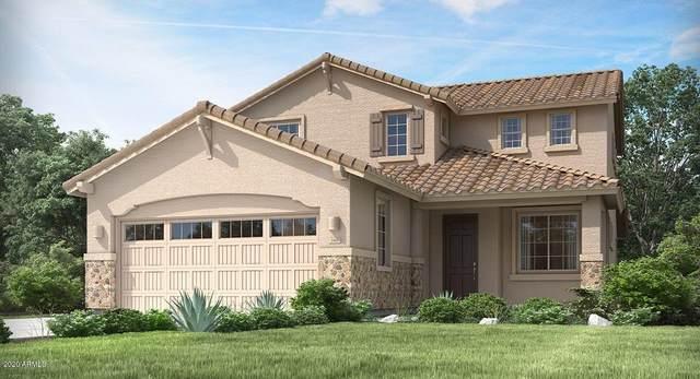 12321 W Glenn Drive, Glendale, AZ 85307 (MLS #6039684) :: Lucido Agency