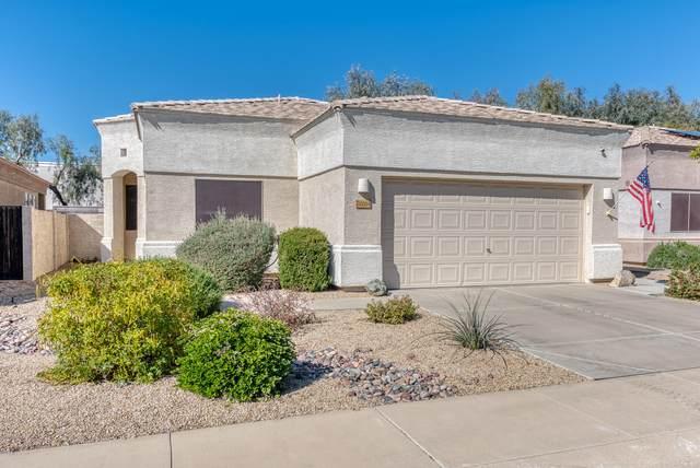 20264 N 64TH Avenue, Glendale, AZ 85308 (MLS #6039685) :: Lucido Agency