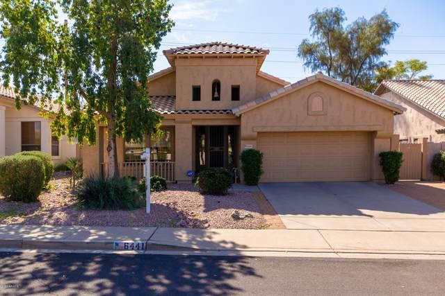 6441 E Sierra Morena Street, Mesa, AZ 85215 (MLS #6039690) :: Cindy & Co at My Home Group