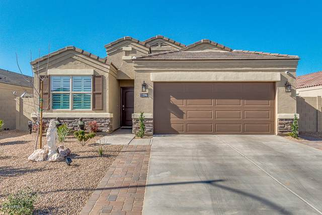 2390 E San Lorenzo Trail, Casa Grande, AZ 85194 (MLS #6039714) :: Yost Realty Group at RE/MAX Casa Grande
