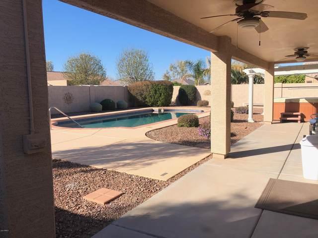 11249 E Roselle Avenue, Mesa, AZ 85212 (MLS #6039727) :: Brett Tanner Home Selling Team
