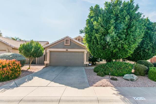 2564 N 134TH Avenue, Goodyear, AZ 85395 (MLS #6039741) :: Conway Real Estate