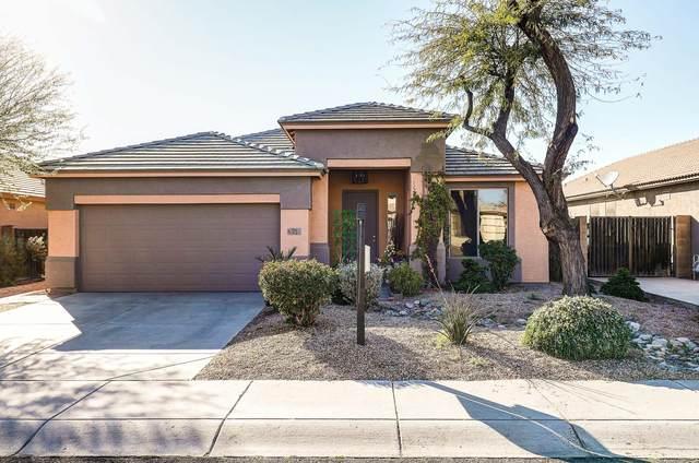 206 S 123RD Drive, Avondale, AZ 85323 (MLS #6039749) :: RE/MAX Desert Showcase