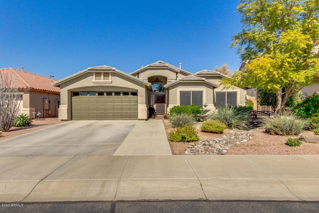16150 W Gibson Lane, Goodyear, AZ 85338 (MLS #6039762) :: The Property Partners at eXp Realty
