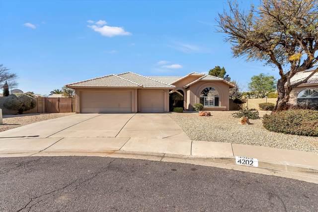 4202 E San Angelo Avenue, Gilbert, AZ 85234 (MLS #6039772) :: Kepple Real Estate Group
