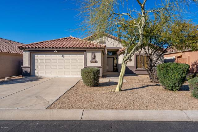 4602 E Thorn Tree Drive, Cave Creek, AZ 85331 (MLS #6039792) :: Lucido Agency