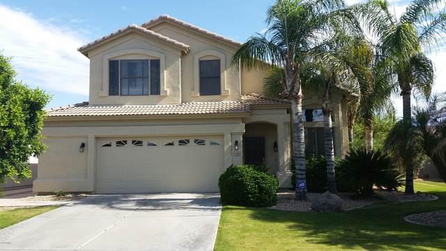 1904 W Canyon Way, Chandler, AZ 85248 (MLS #6039807) :: CC & Co. Real Estate Team