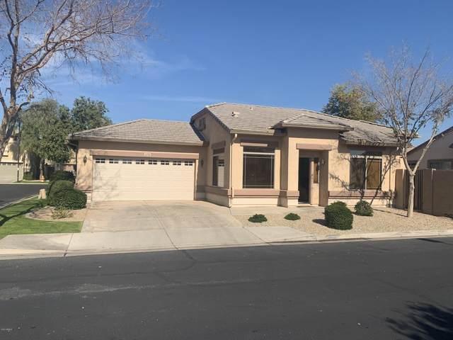 1278 E Thompson Way, Chandler, AZ 85286 (MLS #6039809) :: The W Group