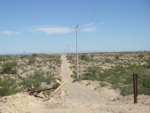 319 W Indian School Road, Buckeye, AZ 85326 (MLS #6039823) :: Yost Realty Group at RE/MAX Casa Grande