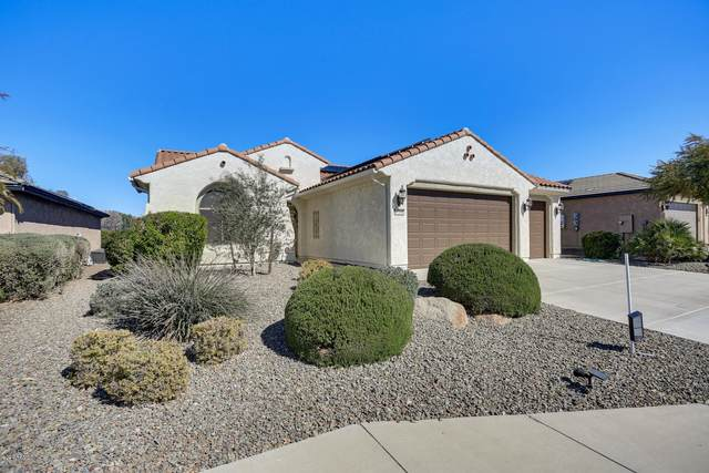27088 W Tonopah Drive, Buckeye, AZ 85396 (MLS #6039906) :: The Kenny Klaus Team