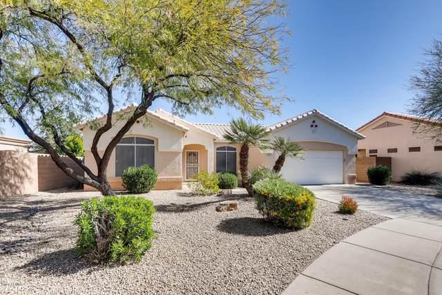 22431 N 147TH Drive, Sun City West, AZ 85375 (MLS #6039945) :: Lucido Agency