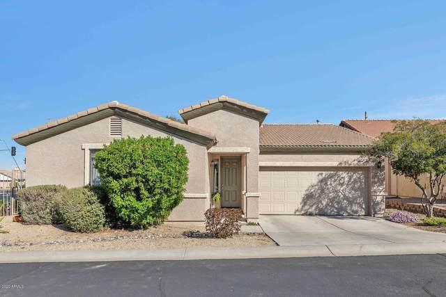 6640 E Rochelle Circle, Mesa, AZ 85215 (MLS #6039946) :: Cindy & Co at My Home Group