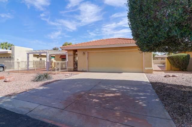 25813 S Hollygreen Drive, Sun Lakes, AZ 85248 (MLS #6039959) :: Lucido Agency