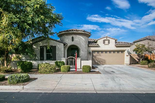 20100 E Domingo Road, Queen Creek, AZ 85142 (MLS #6039992) :: The W Group