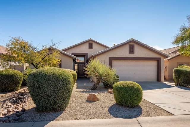 4553 E Thorn Tree Drive, Cave Creek, AZ 85331 (MLS #6040002) :: RE/MAX Desert Showcase