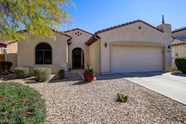 25521 N 54TH Lane, Phoenix, AZ 85083 (MLS #6040004) :: RE/MAX Desert Showcase