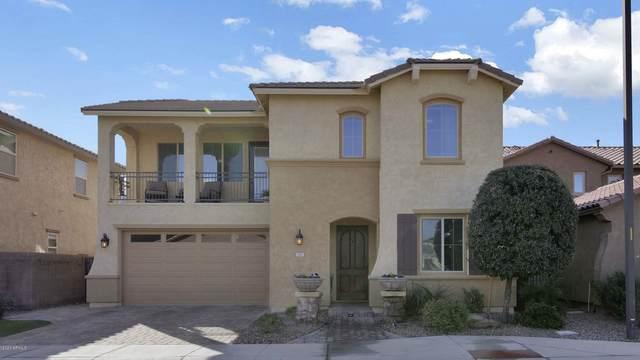 167 E Canyon Way, Chandler, AZ 85249 (MLS #6040021) :: The W Group