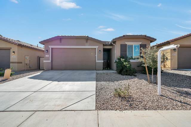 4399 W Kirkland Avenue, Queen Creek, AZ 85142 (MLS #6040044) :: Cindy & Co at My Home Group