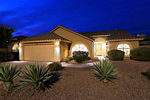 4542 E Via Dona Road, Cave Creek, AZ 85331 (MLS #6040105) :: RE/MAX Desert Showcase