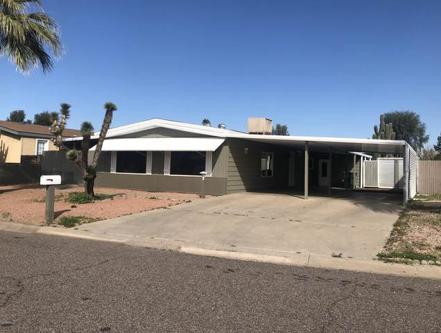 2516 E Cowan Circle, Phoenix, AZ 85050 (MLS #6040114) :: Brett Tanner Home Selling Team